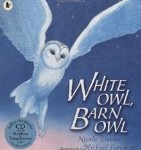White Owl, Barn Owl Nicola Davies and Michael Foreman