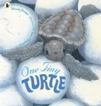 One Tiny Turtle Nicola Davies and Jane Chapman