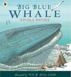Big Blue Whale Nicola Davies and Nick Maland