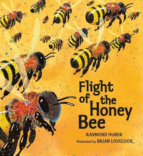 Flight of the Honey Bee, Raymond Huber (Author), Brian Lovelock (Illustrator)
